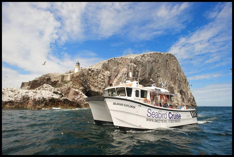 Catamaran Boat Trip